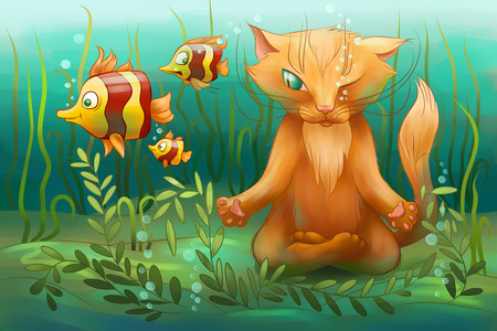 yoga cat sitting under water and watchin on the fish photo