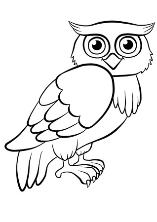 autumn colouring: cute kind owl sitting in the forest