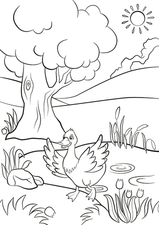 Coloring pages. Cute duck runs from the pond. There are tree, flowers and reeds around. Summer.