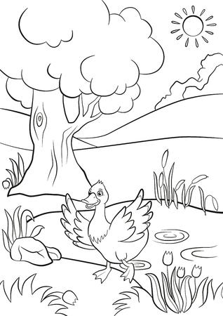 Coloriage. canard mignon va de l'étang. Il y a arbres, des fleurs et des roseaux autour. Été. Banque d'images - 56005043