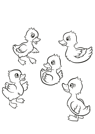 coloration: Coloring pages. Five little cute ducklings swim on the lake and stand on the grass.