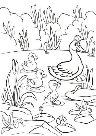 Malvorlagen. Art Ente und freie kleine nette Entlein schwimmen auf dem See. Sie sind glücklich und Lächeln. Es gibt Sträucher, Gras, Steine, Wasserlilien und Schilf herum. Sommer.