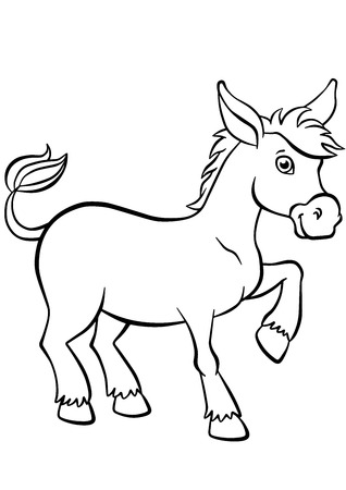 jackass: Coloring pages. Animals. Little cute donkey stands and smiles.