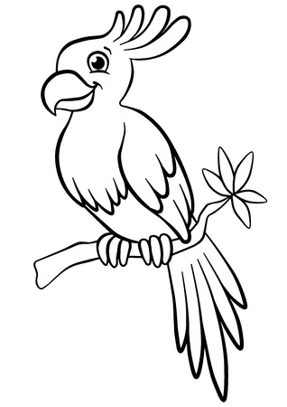 Coloring pages. Birds. Little cute parrot sits on the branch and smiles.