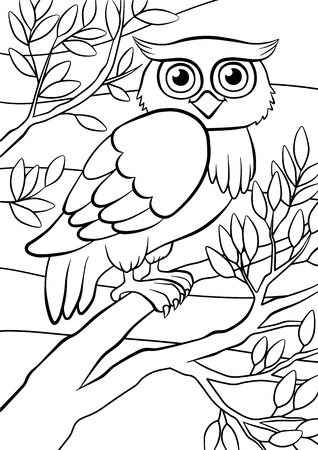 printable coloring pages: Coloring pages. Birds. Cute owl sits on the tree.