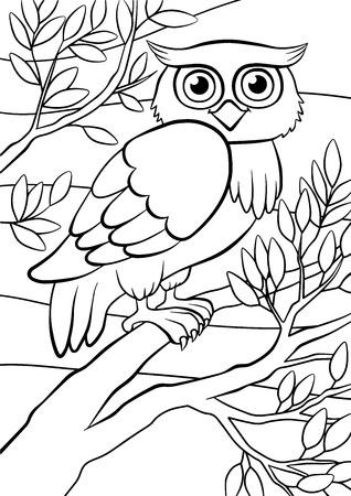 Kolorowanki. Ptaki. Słodkie sowa siedzi na drzewie.