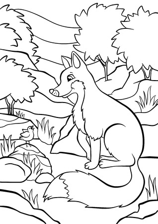 singing bird: Coloring pages. Animals. Little cute fox sits and looks at the singing bird.