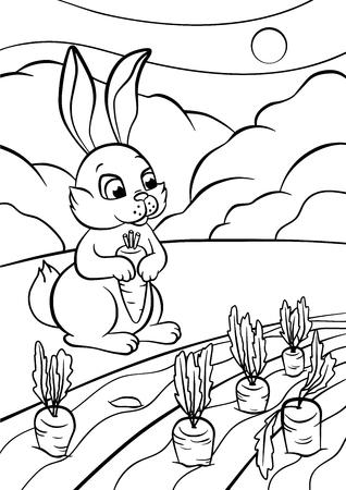 Malvorlage. Color Me: Biber. Kleine Niedliche Hase Hält Eine Karotte ...