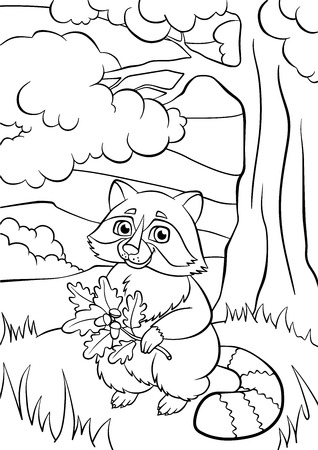 coloration: Coloring pages. Animals. Little cute raccoon holds oak twig in the hands.
