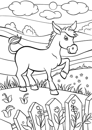 jackass: Coloring pages. Animals. Little cute donkey stands on the field and smiles. Illustration