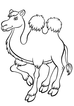 coloring pages: Coloring pages. Animals. Cute camel stands and smiles.