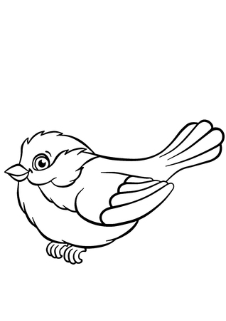 titmouse: Coloring pages. Birds. Little cute titmouse sits and smiles. Illustration