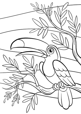 Coloring pages. Birds. Little cute toucan sits on the tree banch and smiles.