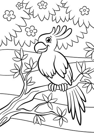 Páginas Para Colorear. Aves. Lorito Lindo Se Sienta En La Rama Y ...