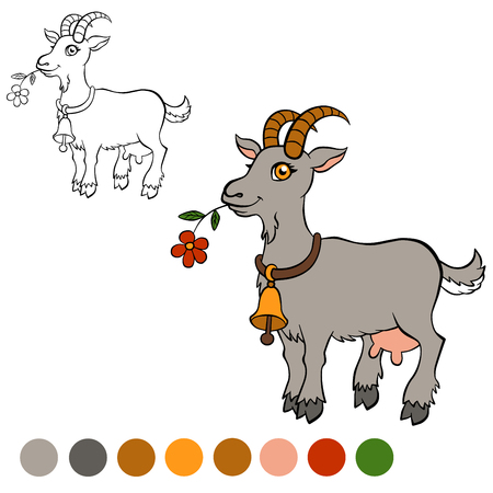 Coloring page. Color me: goat. Cute goat holds a flower in the mouth. Illustration
