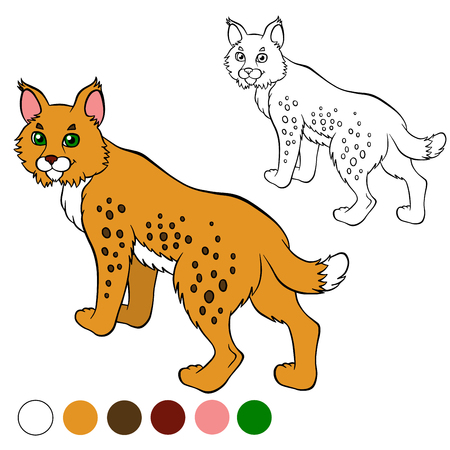 lynx: Coloring page. Color me: lynx. Cute beautiful lynx stands and smiles.