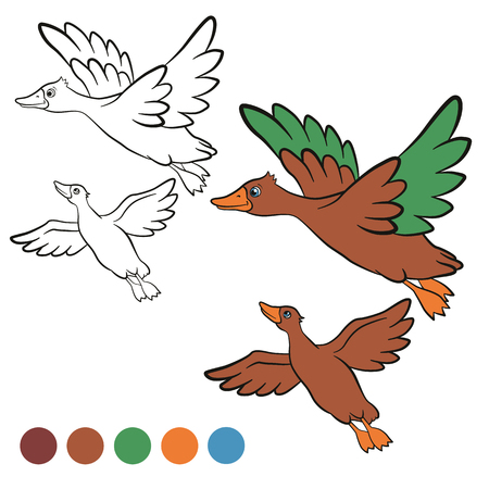 two ducks: Coloring page. Color me: duck.  Two ducks fly under the lake. They are smiling and happy.