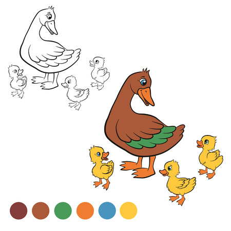free me: Coloring page. Color me: duck. Kind duck and free little cute ducklings walk. They are happy and smile.
