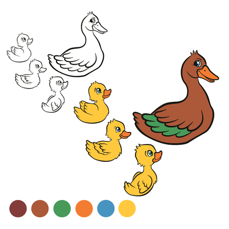 free me: Coloring page. Color me: duck.  Kind duck and free little cute ducklings swim on the lake. They are happy and smile.