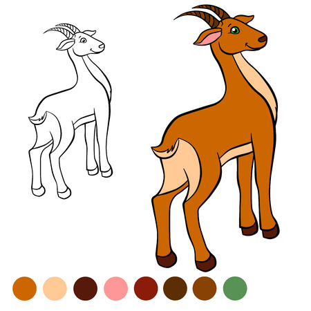 antelope: Coloring page. Color me: antelope.  Little cute antelope stands and smiles.