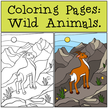 antelope: Coloring Pages: Wild Animals. Little cute antelope stands on the rocks.