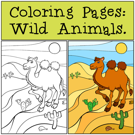 Coloring Pages: Wild Animals. Cute camel stands on the sand in the desert and smiles.
