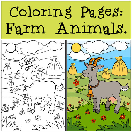 Coloring Pages: Farm Animals. Cute goat stands on the grass in the field and smiles.