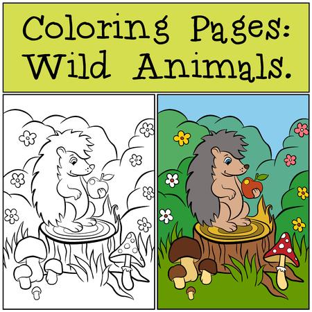 Kleurplaten: Wild Animals. Weinig leuke egel zit op de stomp en kijkt naar appel.
