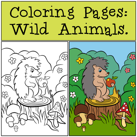 Coloring Pages: Wild Animals. Little cute hedgehog sits on the stump and looks at apple.