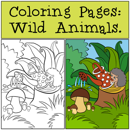 water's: Coloring Pages: Wild Animals. Little cute hedgehog sits on the stump and waters mushrooms. Illustration
