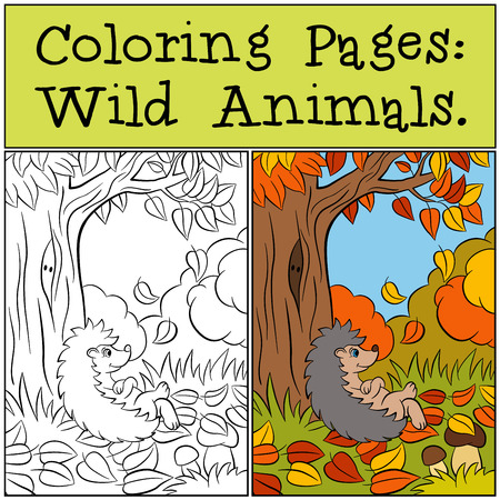 Coloring Pages: Wild Animals. Little cute hedgehog sits near the tree. Autumn.