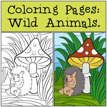 sleeps: Coloring Pages: Wild Animals. Little cute hedgehog sleeps near the mushroom.