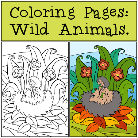 coloration: Coloring Pages: Wild Animals. Mother hedgehog holds little cute baby hedgehog.