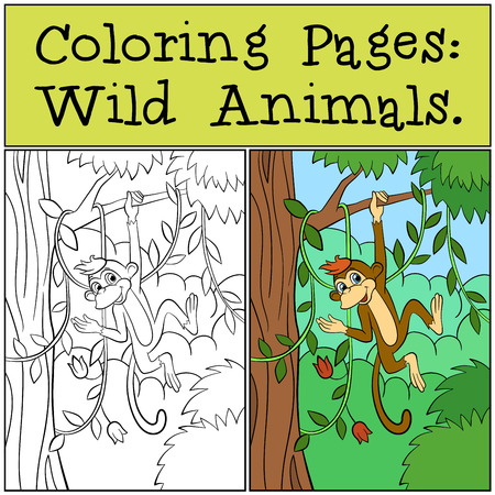 dibujos para colorear: Coloring Pages: Wild Animals. Little cute monkey hangs on the tree branch.