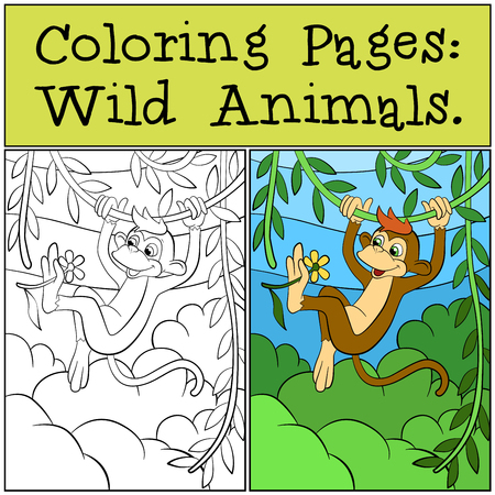 Coloring Pages: Wild Animals. Little cute monkey looks at the flower.