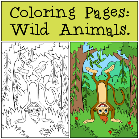 upside: Coloring Pages: Wild Animals. Little cute monkey stands upside down.