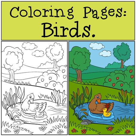 dibujos para colorear: P�ginas para colorear: Aves. pato de la madre nada con su peque�o patito lindo en el estanque.