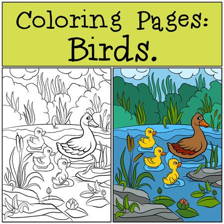 dibujos para colorear: P�ginas para colorear: Aves. Pato de la madre con su peque�o patito lindo.