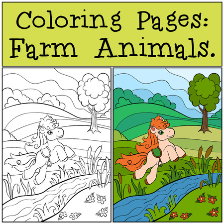 runs: Coloring Pages: Farm Animals. Little cute pony runs and smiles. Illustration