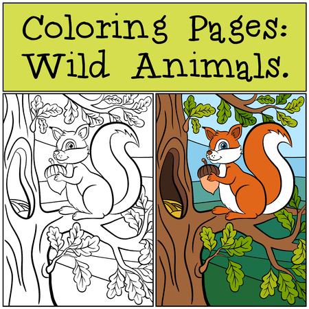 Coloring Pages: Wild Animals. Little cute squirrel stands on the oak banch and smiles.
