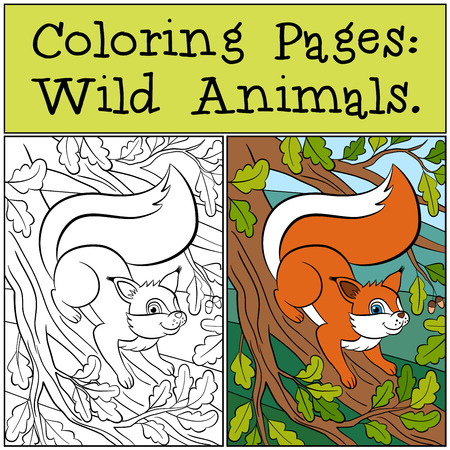 dibujos para colorear: P�ginas para colorear: animales salvajes. Peque�a ardilla linda se coloca en el Banch roble y sonrisas. Vectores