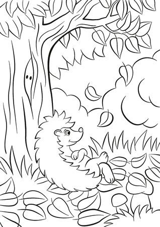 着色のページ。木の近くに小さなかわいい親切なハリネズミが座っています。その秋。木から葉が落ちる。茂み、植物、草、キノコの周りがありま
