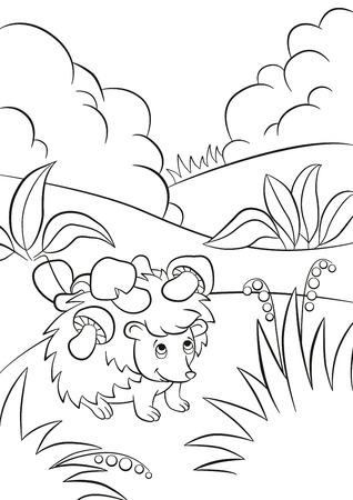 着色のページ。かわいい種類のハリネズミは、針のキノコです。茂みや植物、草の周りの果実があります。ハリネズミの笑顔。