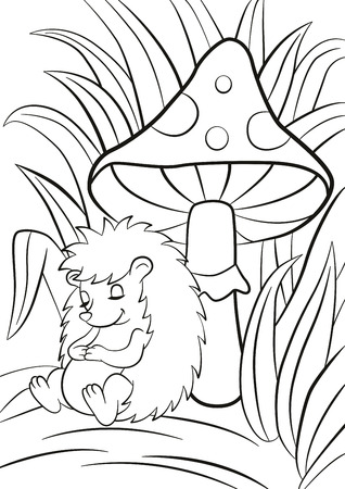 a toadstool: Coloring pages. Little cute hedgehog sleeps near the big toadstool. There are a lot of grass around. The hedgehog smiles. Illustration