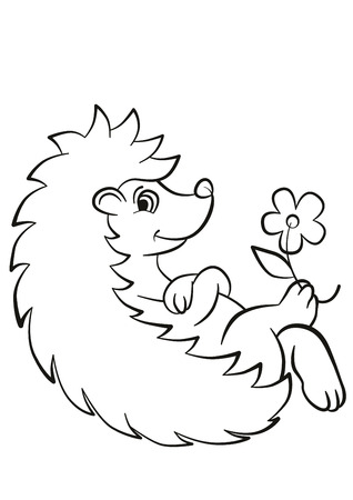 Coloring pages. Little cute hedgehog lays and smiles. There are flower on the paw. Illustration