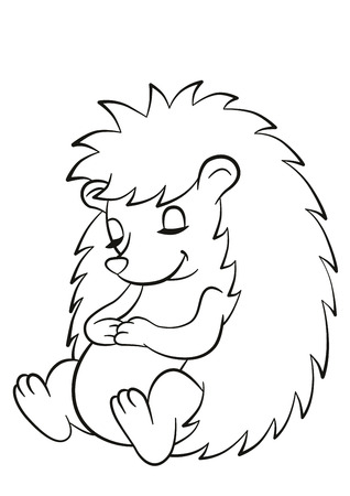 Coloring pages. Little cute hedgehog sits and sleeps. The hedgehog smiles.