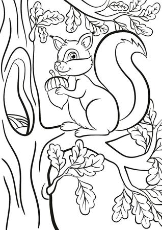 Malvorlage. Kleine niedliche Eichhörnchen sitzt auf dem Bänkchen eines Baumes. Die Eichhörnchen lächelt und hält eine Eichel in den Händen. Vektorgrafik