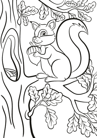 Coloring Page Little Cute Squirrel Sits On The Banch Of A Tree