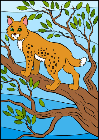 lynx: Cartoon wild animals for kids. Cute beautiful lynx stands on the tree branch and smiles.