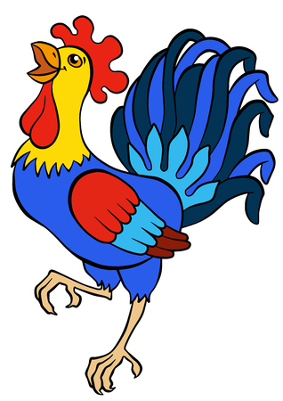 cries: Cartoon birds for kids. Cute beautiful rooster stands and cries. Illustration